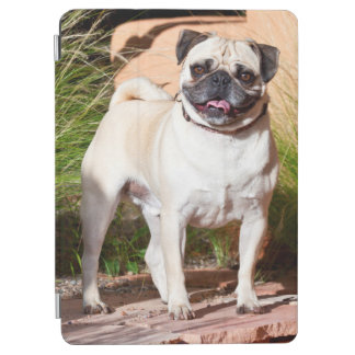 USA, New Mexico. Pug Standing In High Grasses iPad Air Cover