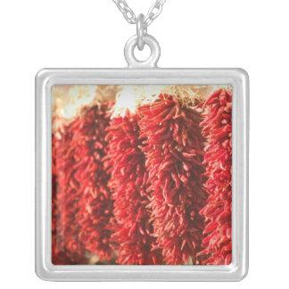 USA, New Mexico, Santa Fe: Downtown Santa Fe, 3 Silver Plated Necklace