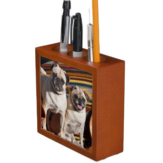 USA, New Mexico. Two Pugs Together Desk Organiser