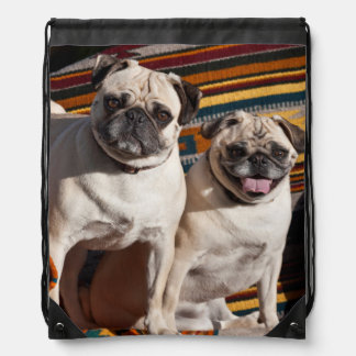 USA, New Mexico. Two Pugs Together Drawstring Bag