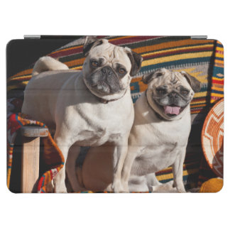 USA, New Mexico. Two Pugs Together iPad Air Cover