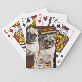 USA, New Mexico. Two Pugs Together Poker Deck