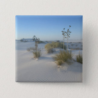 USA, New Mexico, White Sands National 2 15 Cm Square Badge