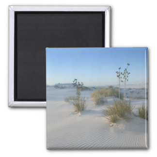 USA, New Mexico, White Sands National 2 Magnet