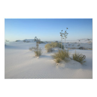 USA, New Mexico, White Sands National 2 Photo Art