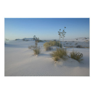 USA, New Mexico, White Sands National 2 Poster