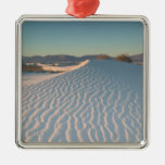 USA, New Mexico, White Sands National Silver-Colored Square Decoration