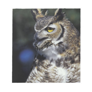USA, New Mexico, Wildlife West Nature Park. Notepad