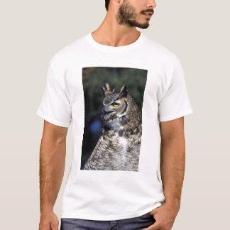 USA, New Mexico, Wildlife West Nature Park. T-Shirt