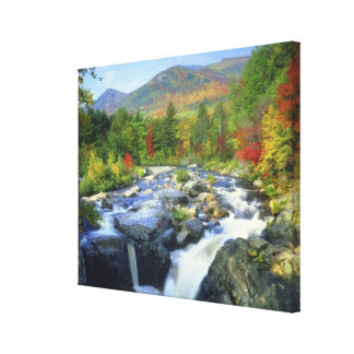 USA, New York. A waterfall in the Adirondack Canvas Print