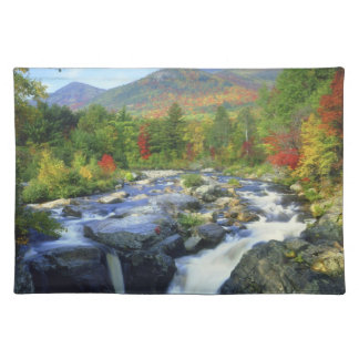 USA, New York. A waterfall in the Adirondack Placemat