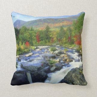 USA, New York. A waterfall in the Adirondack Throw Pillow