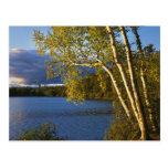 USA, New York, Adirondack Park And Preserve Postcards