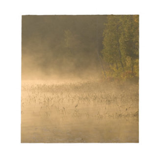USA, New York, Adirondack Park. Sunrise mist on Notepad