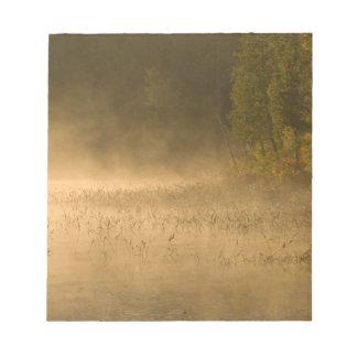 USA, New York, Adirondack Park. Sunrise mist on Notepads