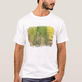USA, New York, Adirondacks, Reflections in water T-Shirt