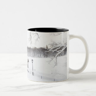 USA, New York City, Central Park in winter Two-Tone Coffee Mug