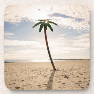 USA, New York City, Coney Island, palm tree on Drink Coasters