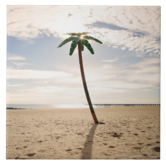 USA, New York City, Coney Island, palm tree on Tile