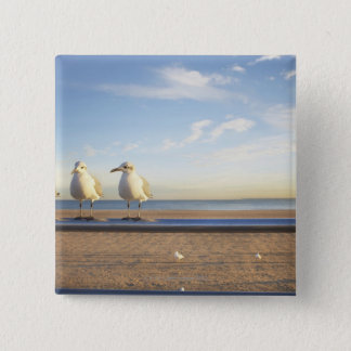 USA, New York City, Coney Island, three seagulls 15 Cm Square Badge