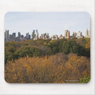 USA, New York City, Manhattan skyline from Mouse Mat