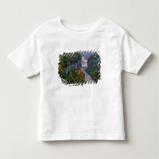 USA, New York, Letchworth State Park. River and Toddler T-Shirt