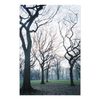 USA, New York, New York City: Central Park Photo