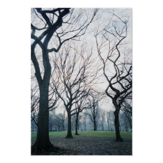 USA, New York, New York City: Central Park Poster