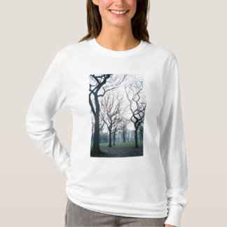 USA, New York, New York City: Central Park T-Shirt