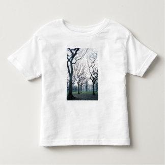 USA, New York, New York City: Central Park Toddler T-Shirt