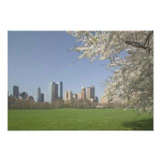 USA, New York, New York City, Manhattan: 18 Photo