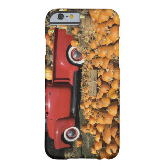 USA, New York, Peconic, pumpkin farm with pickup Barely There iPhone 6 Case