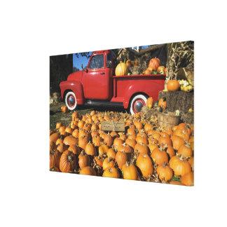USA, New York, Peconic, pumpkin farm with pickup Canvas Print