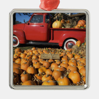 USA, New York, Peconic, pumpkin farm with pickup Christmas Ornament
