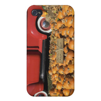 USA, New York, Peconic, pumpkin farm with pickup iPhone 4 Cases