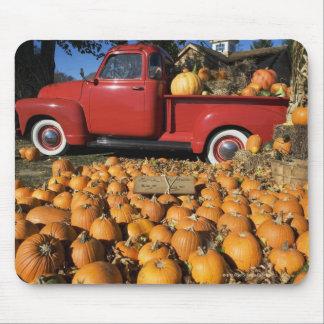 USA, New York, Peconic, pumpkin farm with pickup Mouse Mat