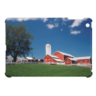 USA, New York, Sharon Springs, Farm iPad Mini Cases