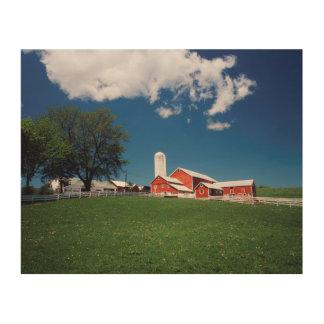 USA, New York, Sharon Springs, Farm Wood Print
