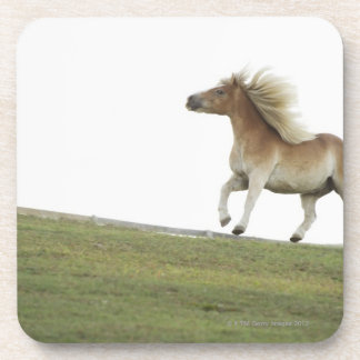 USA, New York State, Hudson, Horse running in 2 Coaster