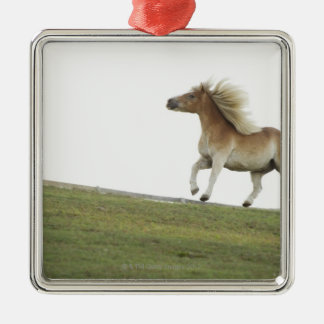 USA, New York State, Hudson, Horse running in 2 Silver-Colored Square Decoration