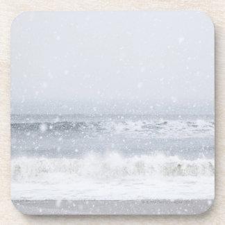 USA, New York State, Rockaway Beach, snow storm Coaster