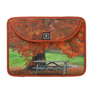 USA, New York, West Park. Bench Under Maple MacBook Pro Sleeves