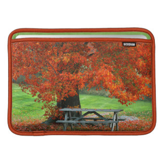 USA, New York, West Park. Bench Under Maple MacBook Sleeve