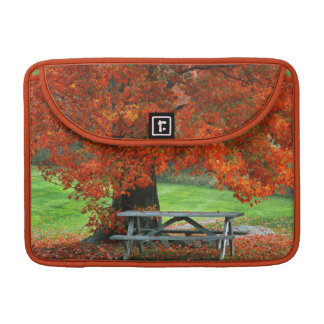 USA, New York, West Park. Bench Under Maple Sleeve For MacBooks