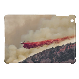 USA, North America, Colorado, Boulder, Flagstaff iPad Mini Cases
