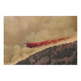 USA, North America, Colorado, Boulder, Flagstaff Wood Wall Art