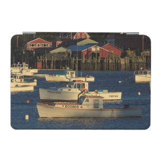 USA, North America, Maine, Bernard, Fishing iPad Mini Cover