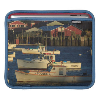 USA, North America, Maine, Bernard, Fishing iPad Sleeve