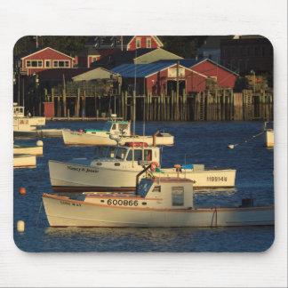 USA, North America, Maine, Bernard, Fishing Mouse Mat