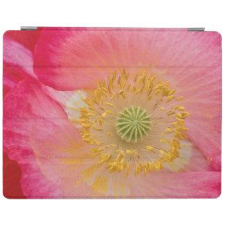 USA, North Carolina. Close-up of poppy interior iPad Cover